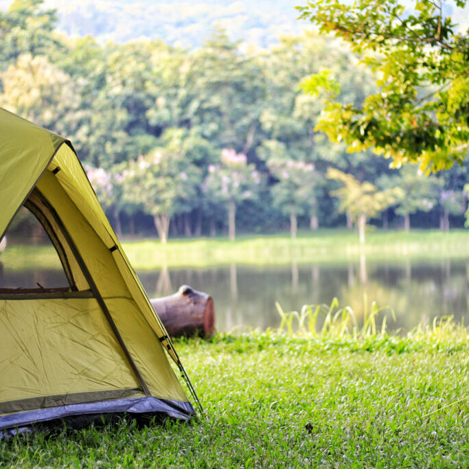 Camping,Green,Tent,In,Forest,Near,Lake
